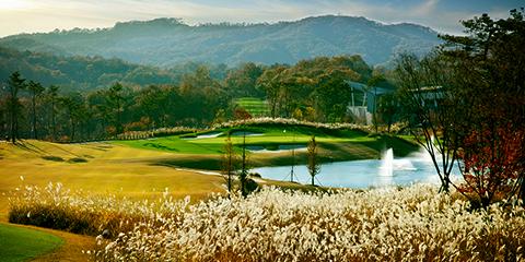 Sejong Field